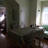Kitchen installation in pale green
